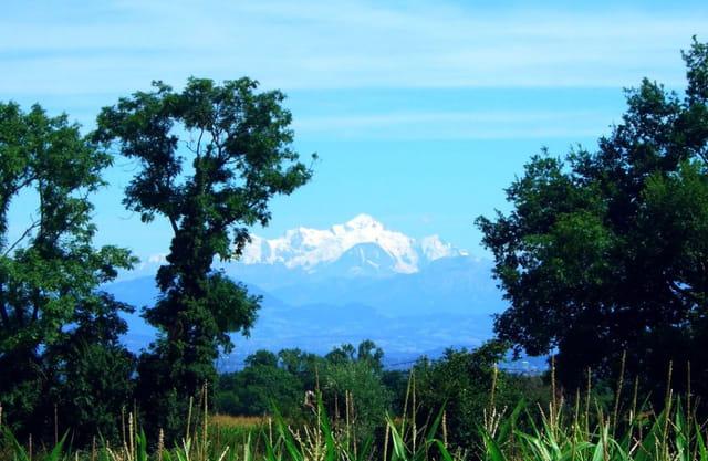 Le Mont Blanc vu de GEX