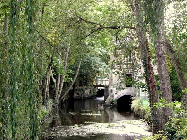 Le moulin d'Arnières