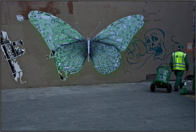Le papillon sur le mur