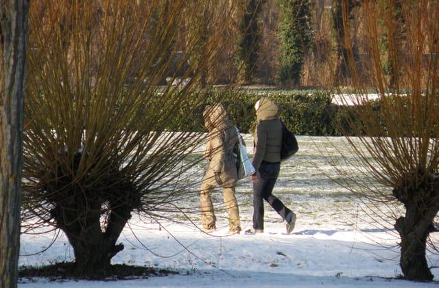 Le Parc Corbière sous la neige