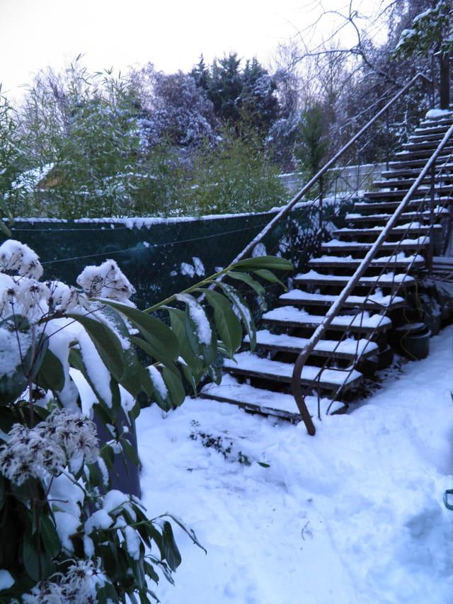 Le Pecq sous la neige