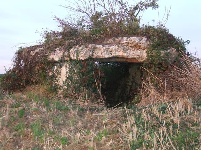 Le petit dolmen
