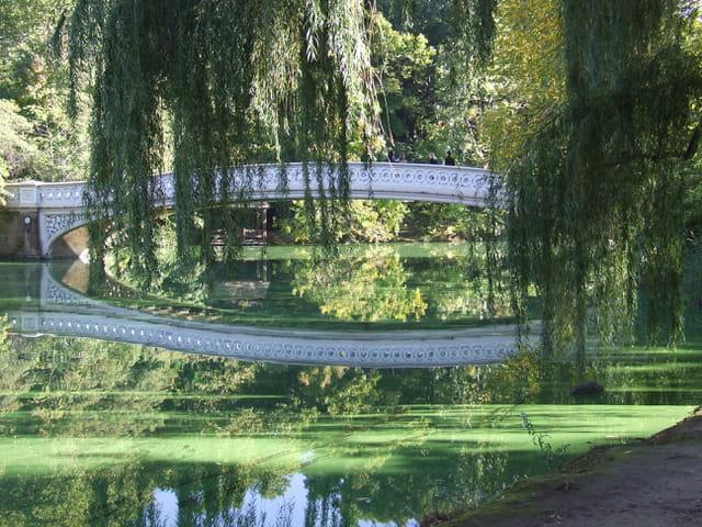 Le pont de l'amour
