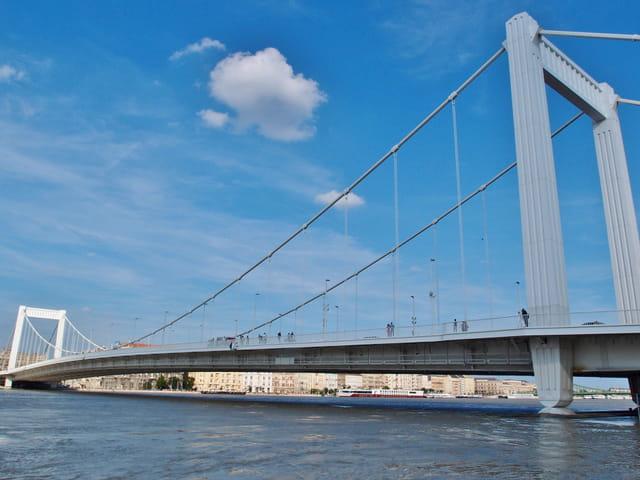 le pont �lisabeth (Erzsébet híd)
