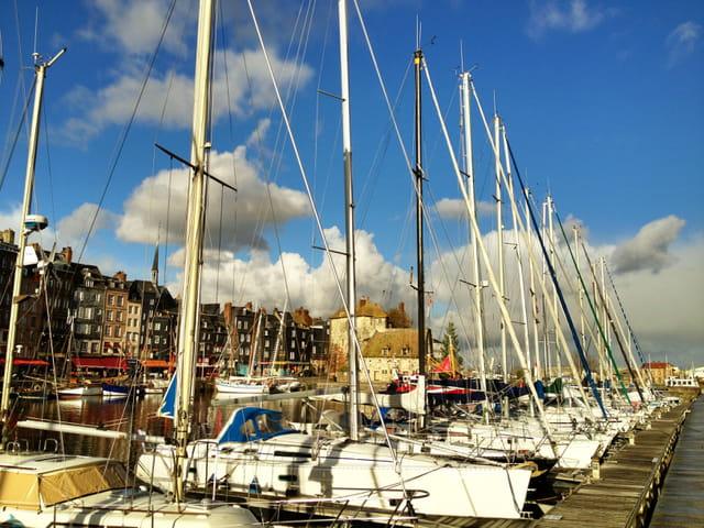 Le port de plaisance fin Novembre 2012.
