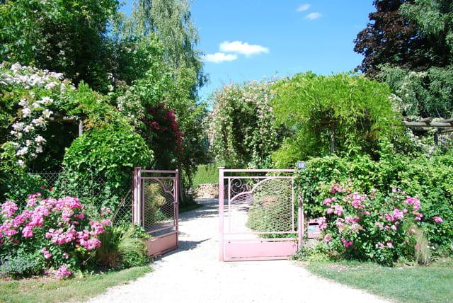 Le portail rose