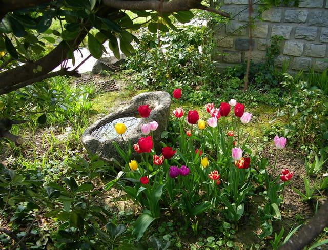 Le printemps au jardin