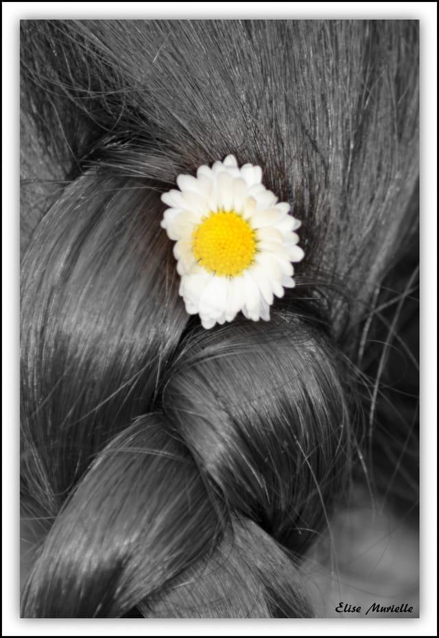 Le printemps dans les cheveux (2)