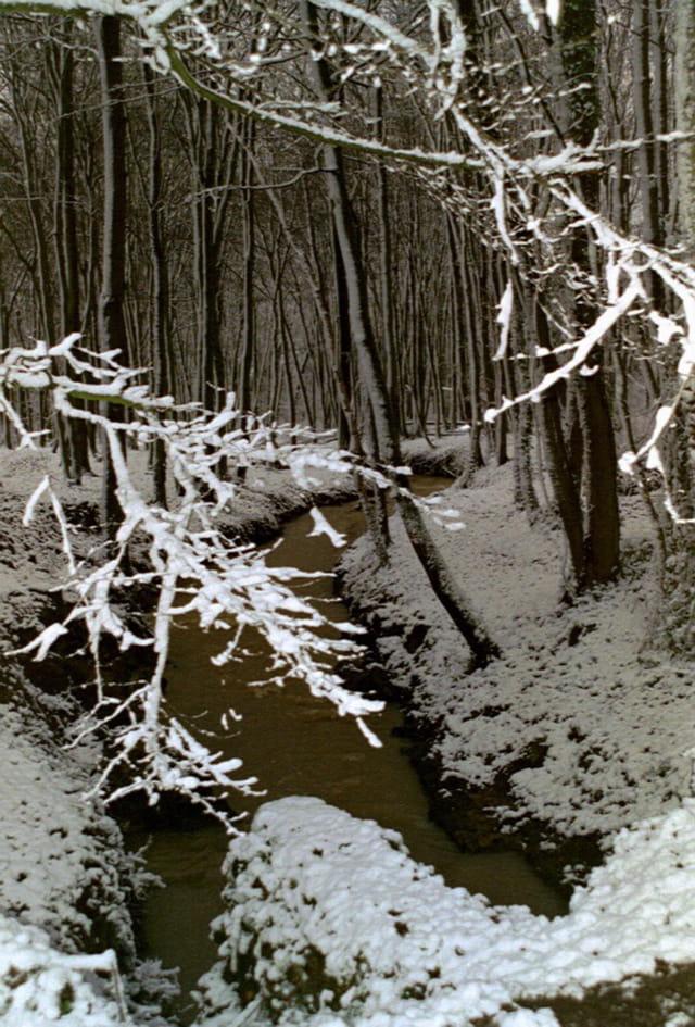 Le Rouillon en hiver