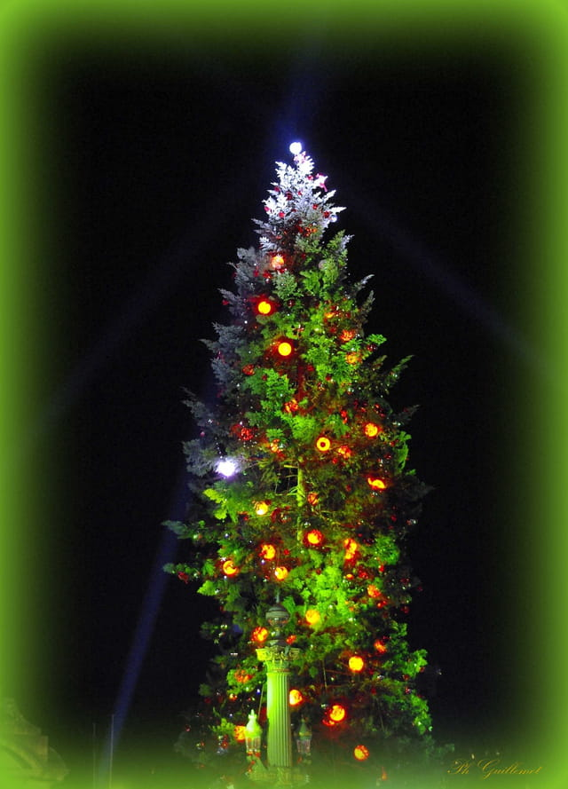 Le sapin de Noël sur la grande place