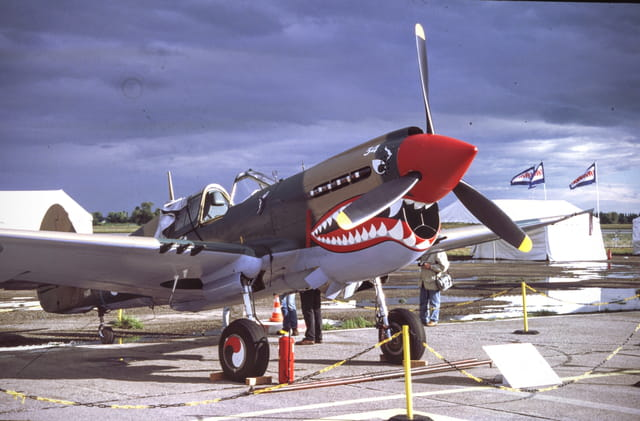 Le sourire du P-40