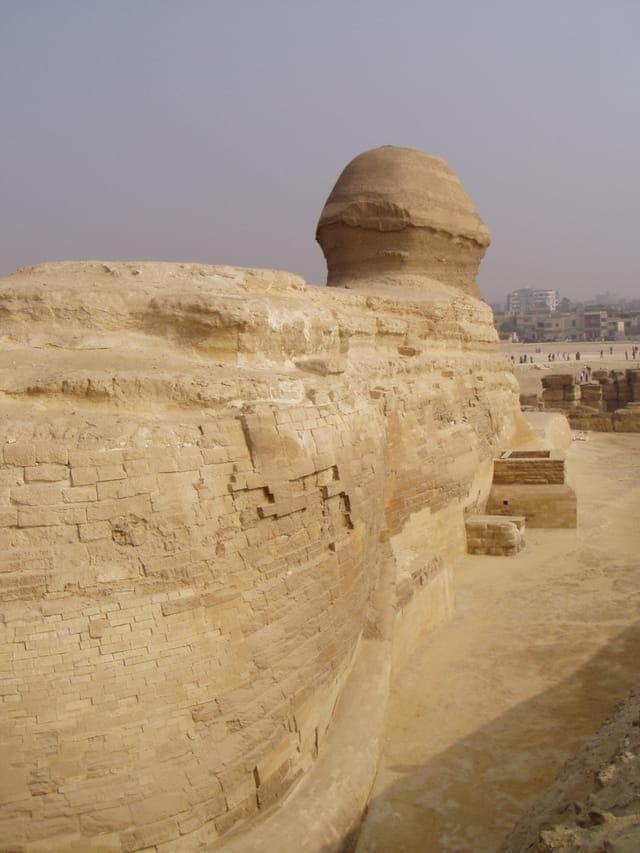 Le sphinx face a la ville