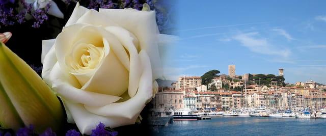 Le Suquet à Cannes