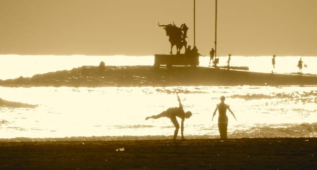 Le Taureau sur la plage