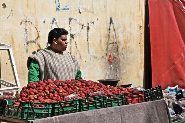 Le vendeur de fraises