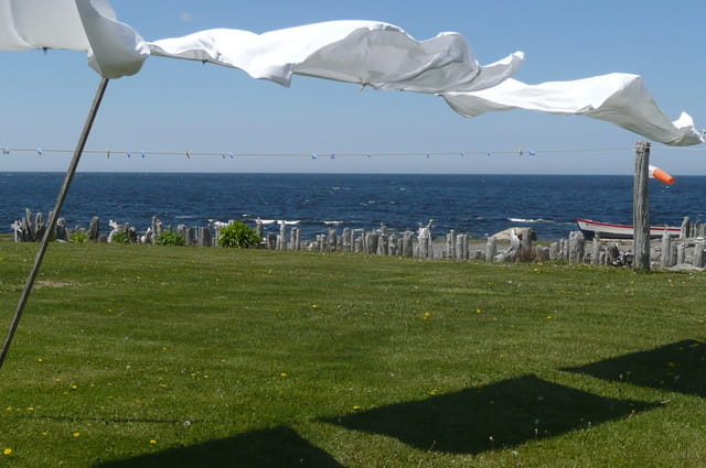 le vent dans les draps par michelle mc murray sur l 39 internaute. Black Bedroom Furniture Sets. Home Design Ideas
