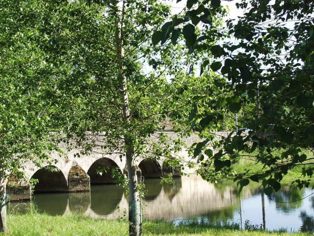 Le vieux pont de pierre