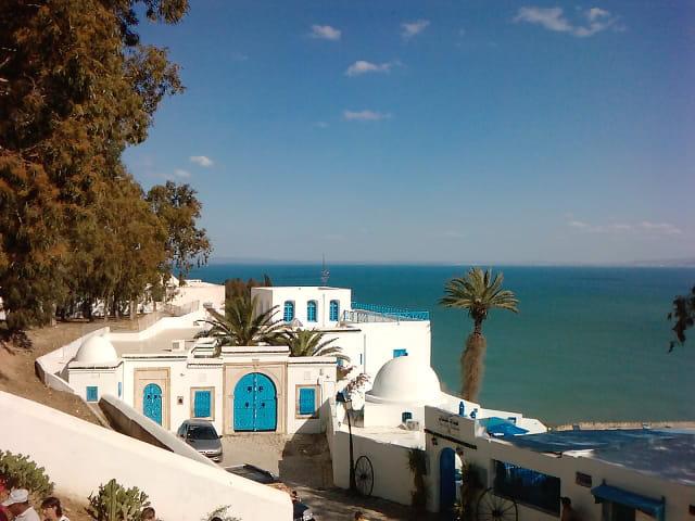 Le village de Sidi Bou Saïd