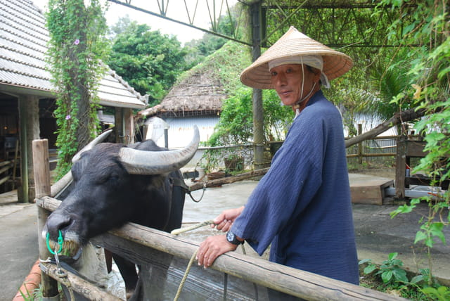 le village traditionnel Ryukyu Mura