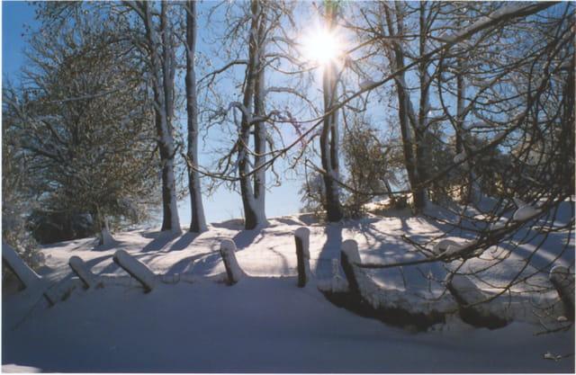 Lemuy sous la neige
