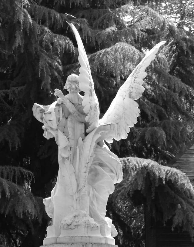 Les ailes de la Muse
