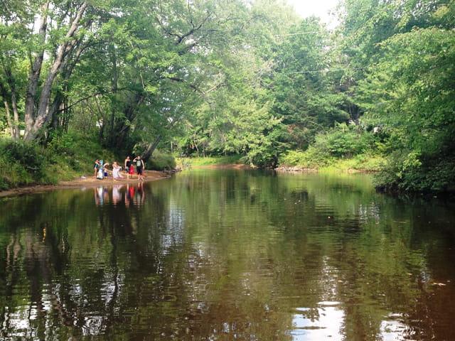 Les baigneurs de la Rivière Noire