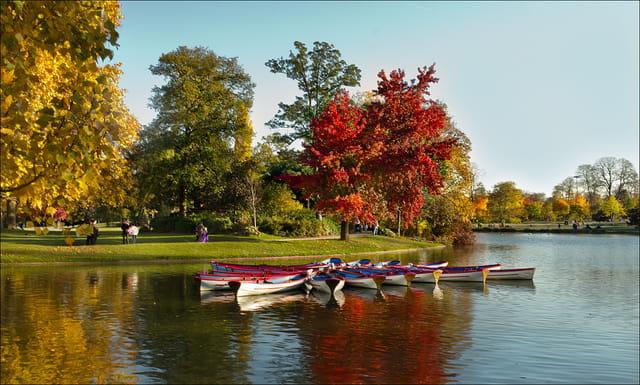 Les barques du lac .