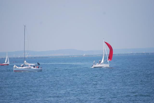 les bateaux du Bassin d'Arcachon