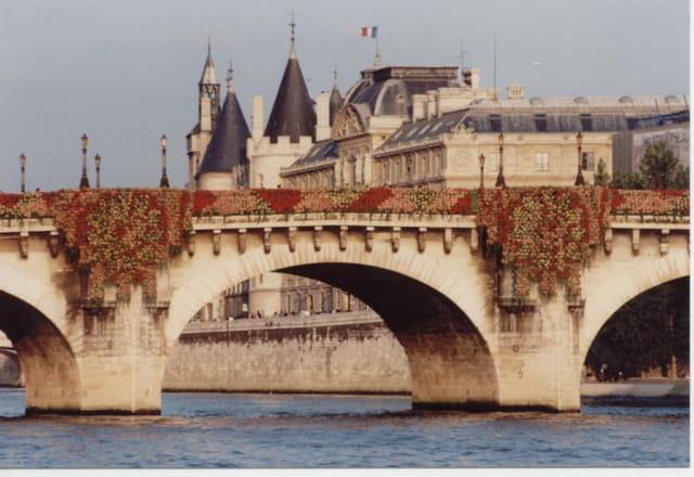 Les bégonias du pont-neuf