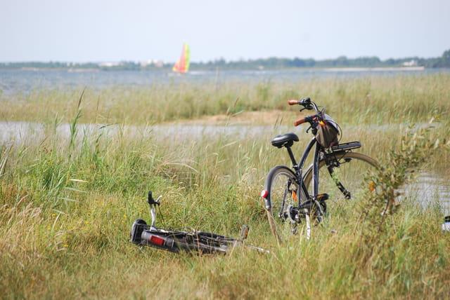 les bicyclettes au bord du lac
