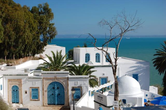Les bleus et blancs de Sidi Bou Said