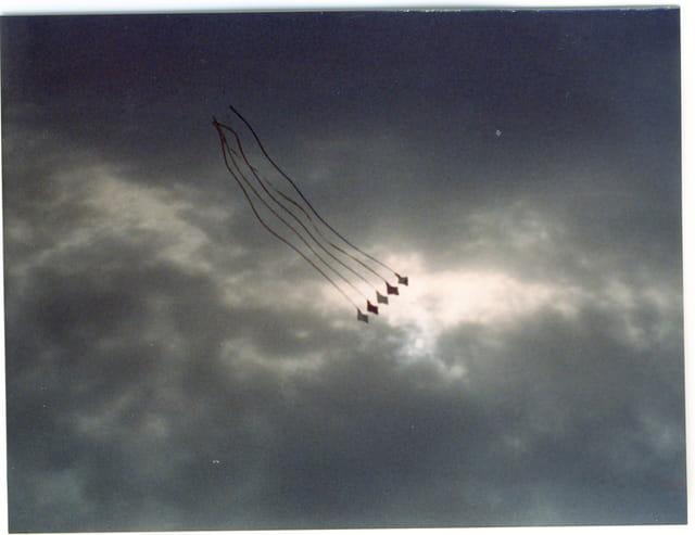 Les cerfs-volants dans un ciel gris