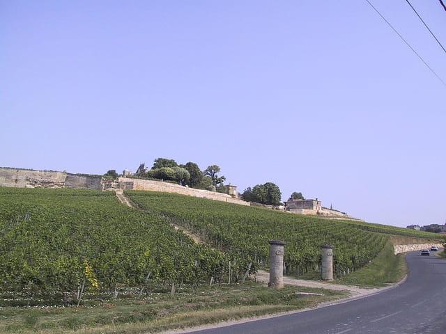 Les côteaux du bon vin