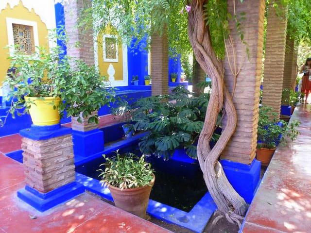 les couleurs du jardin Majorelle 1