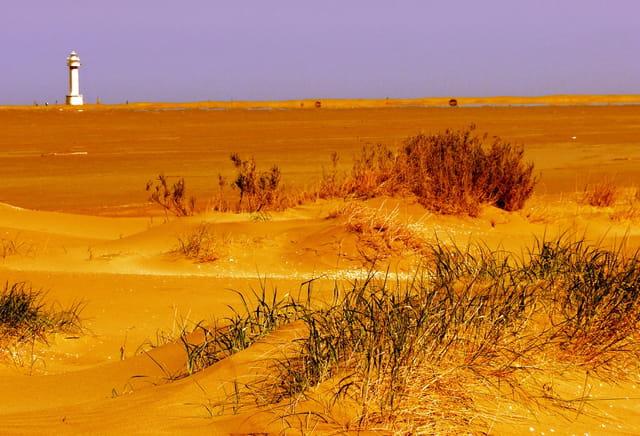 Les Dunes de l'Ebre