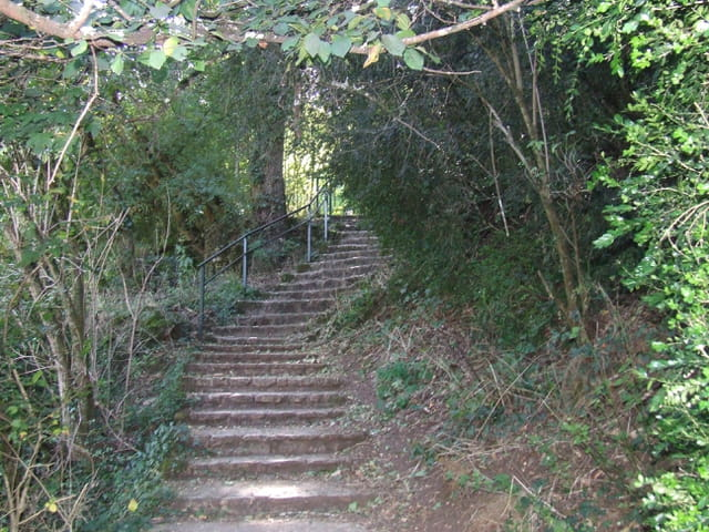 Les escaliers dans la verdure