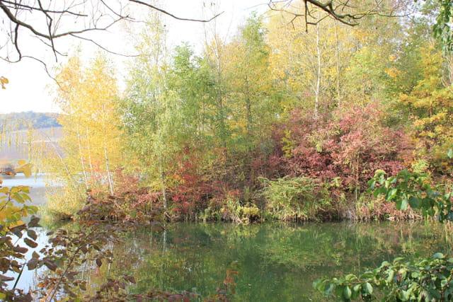 Les étangs à l'automne
