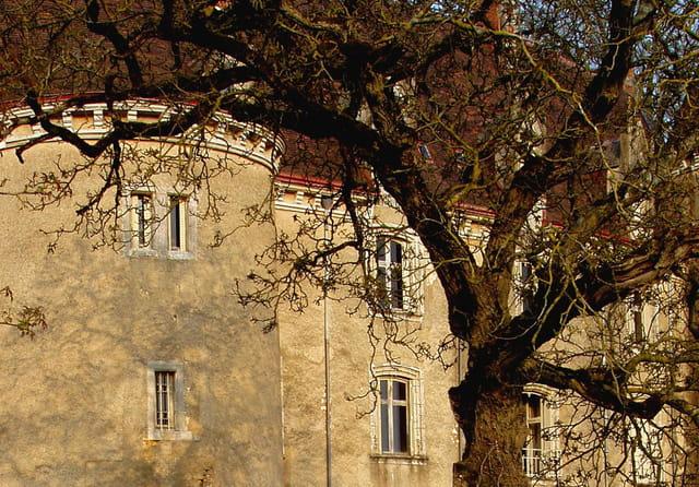 Les fenêtres du chateau