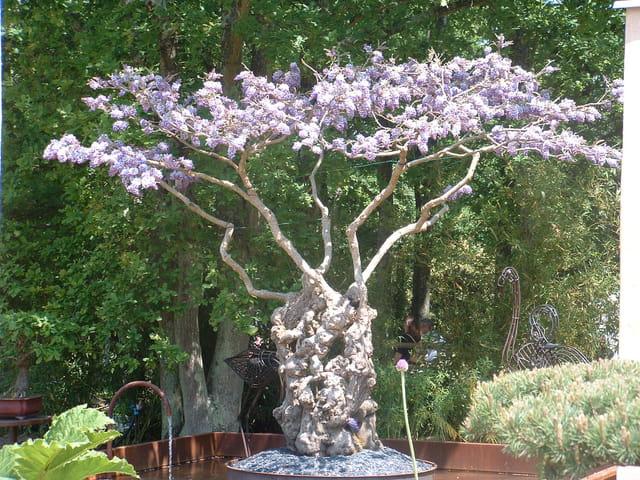 Les floralies à Nantes 2004