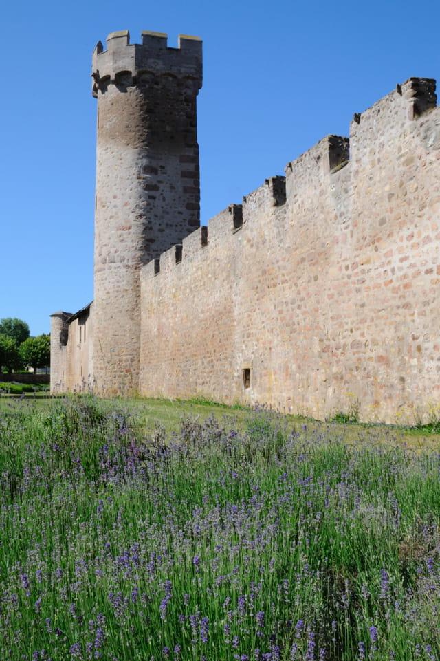 Les fortifications d'Obernai