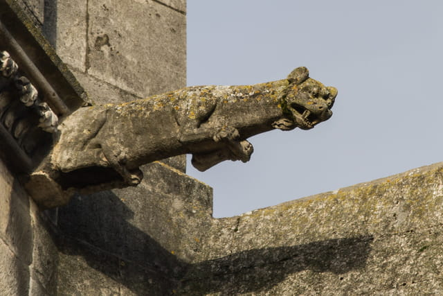 les gargouilles de la cathédrale de Troyes