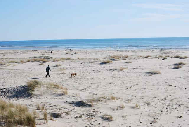 Les grandes plages de sable fin des Landes