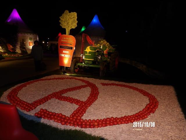 Les journées d'octobre - Le signe de l'Alsace