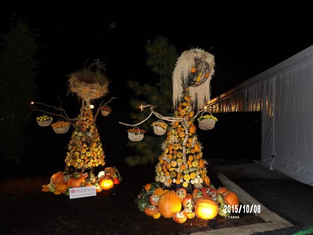 Les journées d'octobre - Les enfants en fruits et légumes