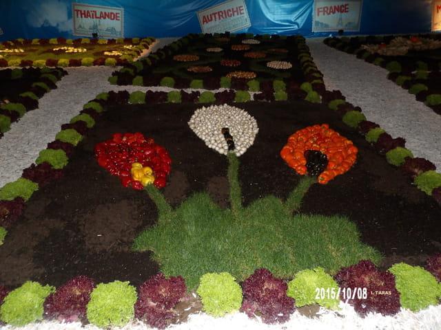 Les journées d'octobre - Les fleurs 03
