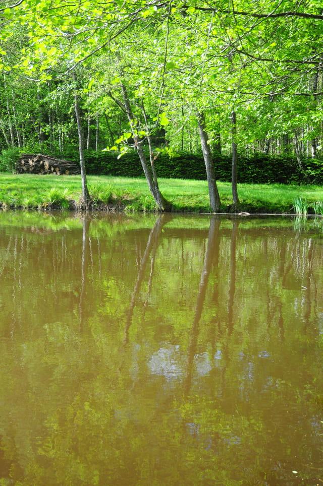 Les milles étangs 4