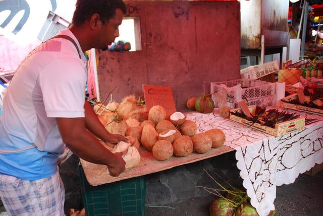 les noix de cocos