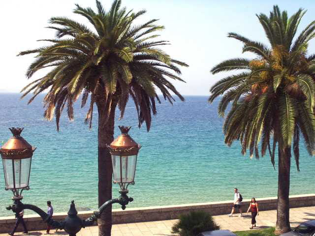 Les palmiers et la mer