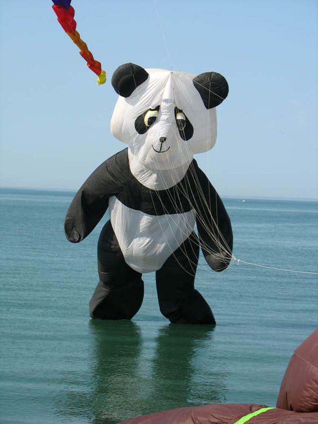 Les pandas attaquent Dieppe !!!