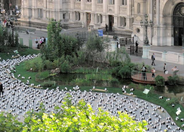 Les pandas de l'Hôtel de Ville